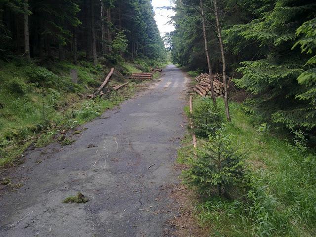 Przełęcz Karkonoska - Fragment podjazdu