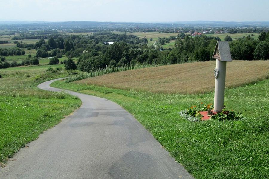 Zamek Kamieniec - Widoki